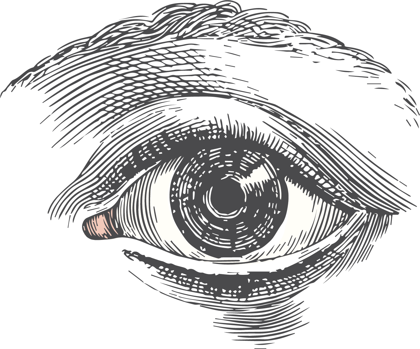 png freeuse stock Blindfold drawing eye. Collection of free academy