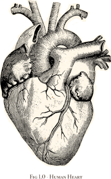 picture Surrealism drawing heart. Illustration and design day.
