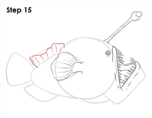 vector transparent stock How to Draw an Anglerfish