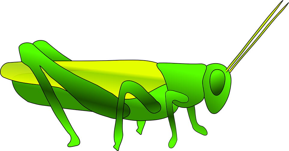 clipart royalty free Grasshopper clipart page. Cricket green free on