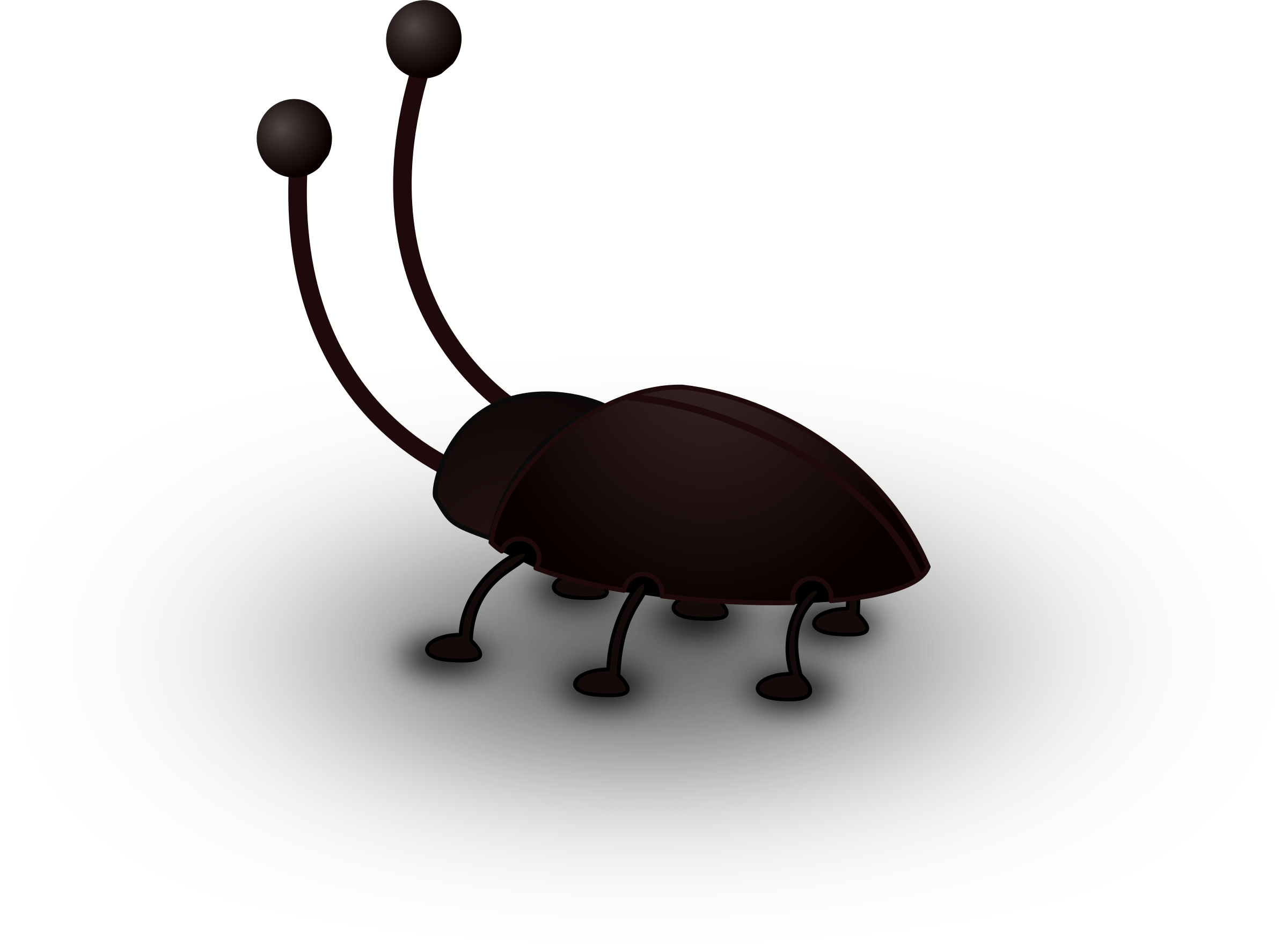 clipart royalty free stock Cockroach big image png. Animal clipart insect.
