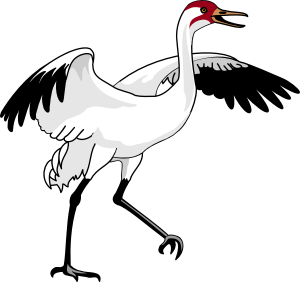 image download Animal crane clipart. Swan clip art at
