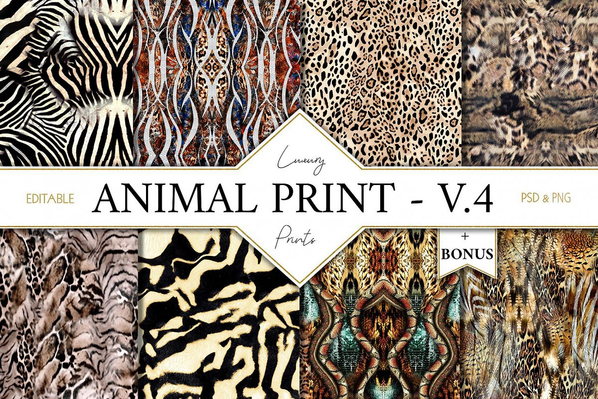 picture library library V safari skin . Animal print clipart
