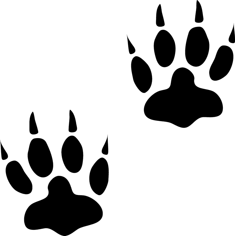 image library download Bear rubber stamp track. Animal tracks clipart