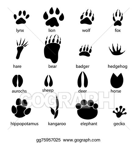 vector transparent Animal tracks clipart. Vector stock set of