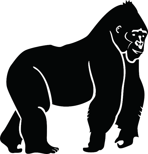 vector freeuse stock Free vector graphic silhouette. Gorilla clipart ivan