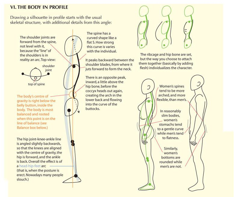 image stock Guide to the body. Ankle drawing profile