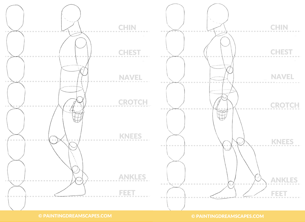 transparent download Ankle drawing profile. Figure for anime artists