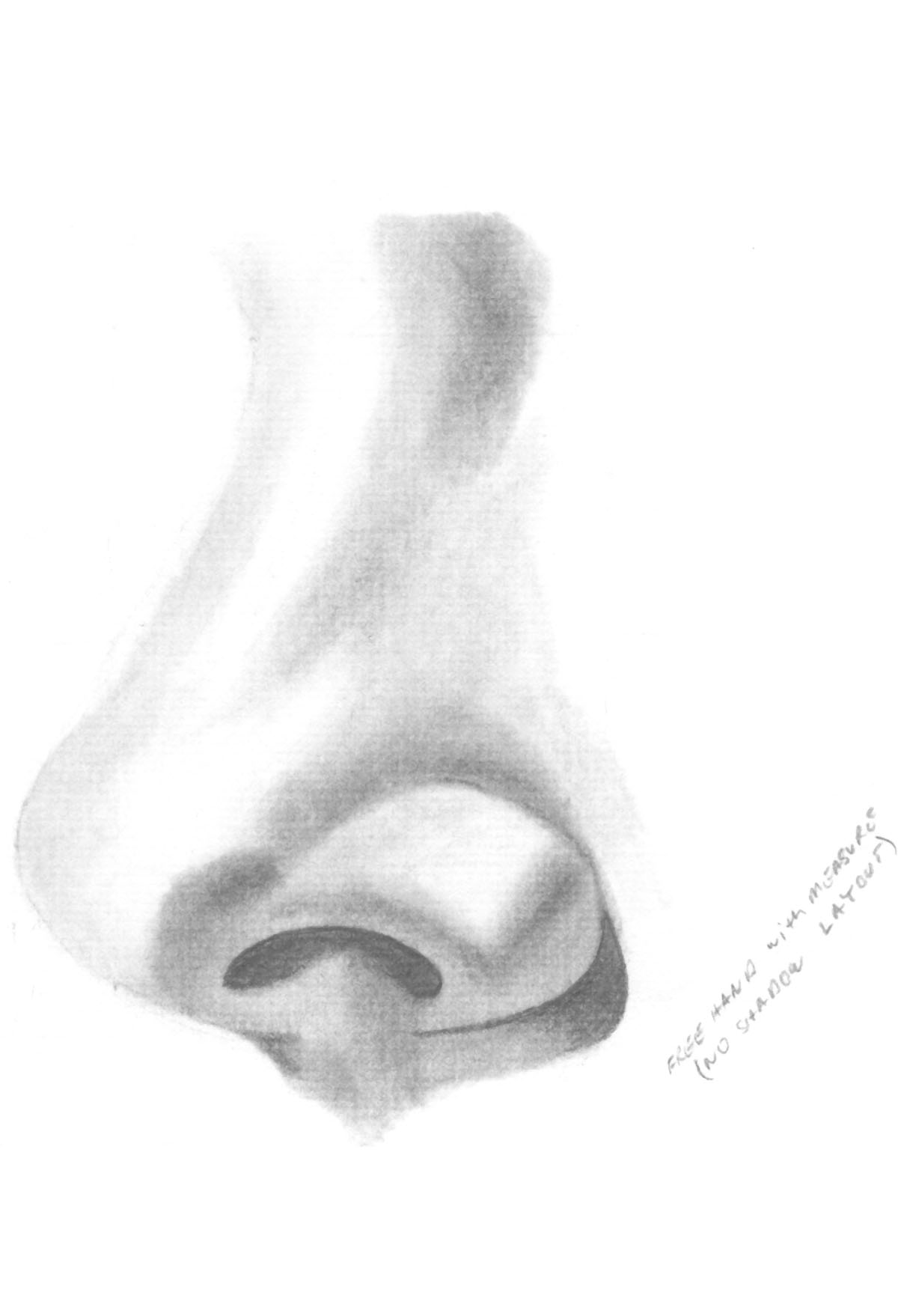 image black and white library  pencil for free. Ankle drawing profile