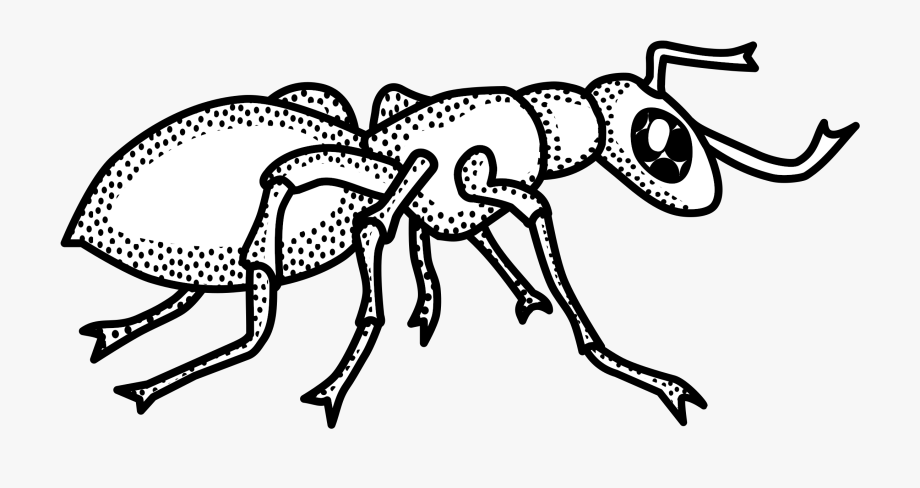 clipart library library Ant outline collection clip. Ants clipart black and white