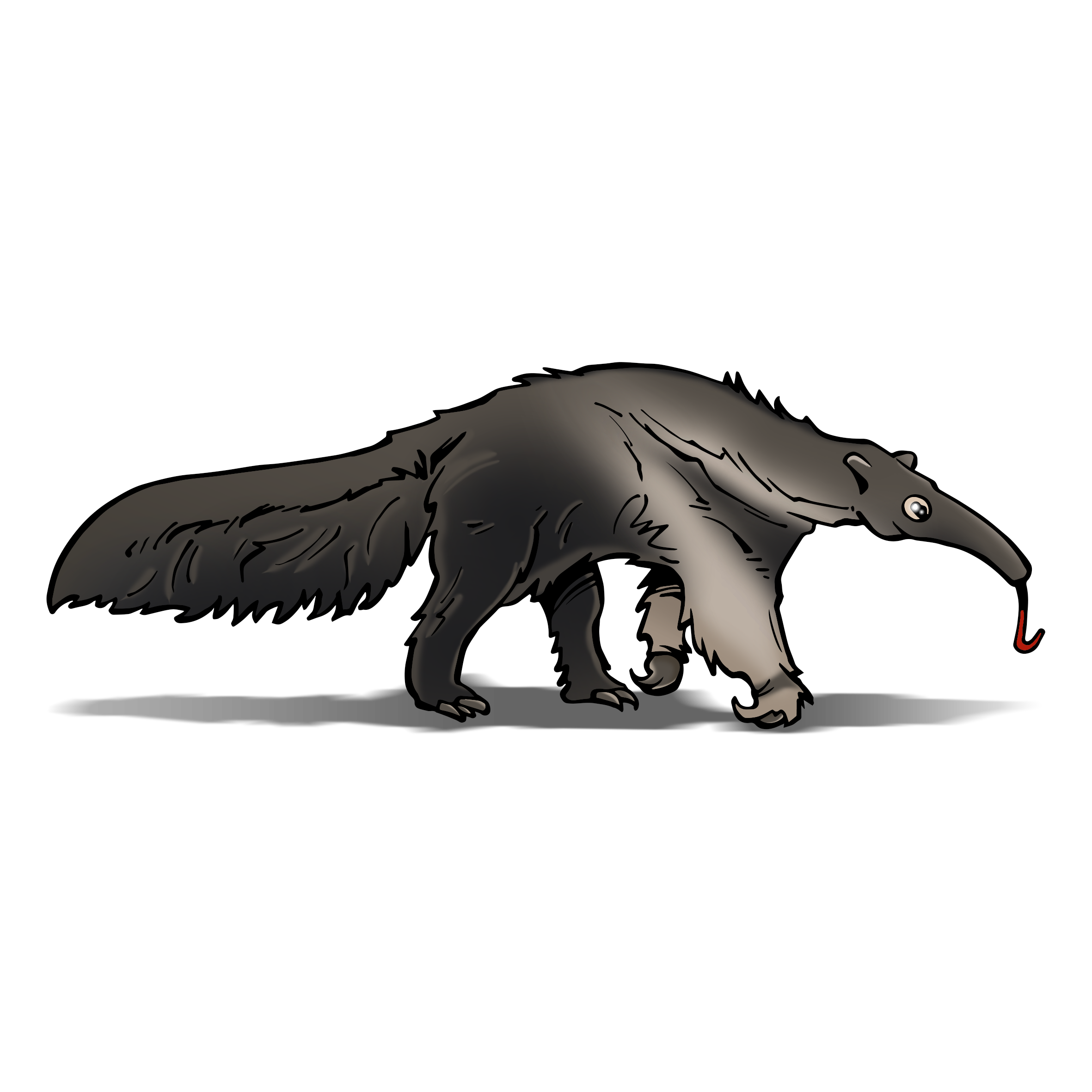png royalty free library Rainforest clipart anteater