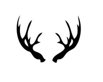 clip Free cliparts download clip. Antler clipart.