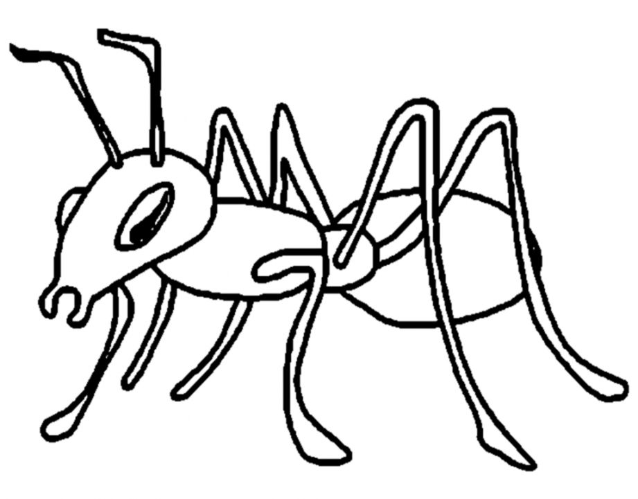 clip art library Wallpapers inspire . Ants clipart black and white