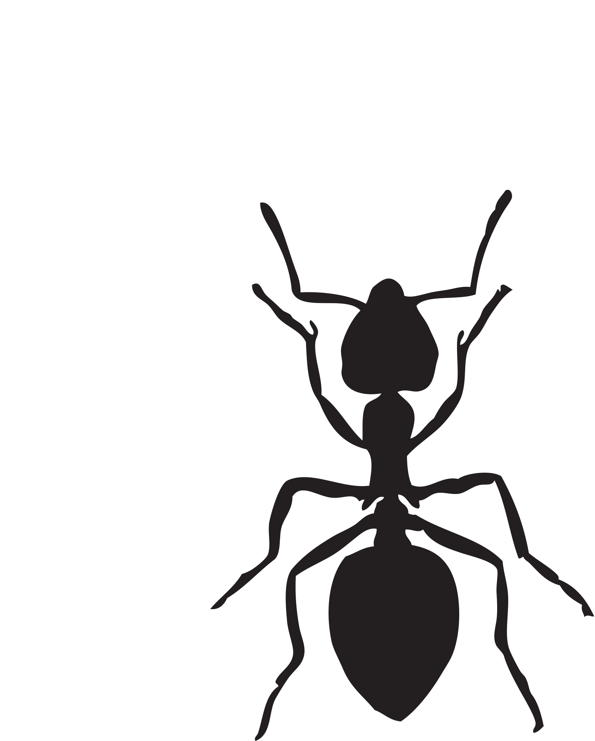 banner freeuse library Acrobat ant big image. Ants clipart black and white