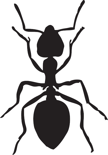 banner library library Free image on pixabay. Mosquito clipart scratch skin.