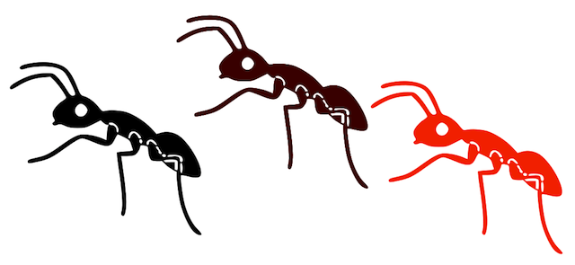 free Free cliparts download clip. Ants marching clipart