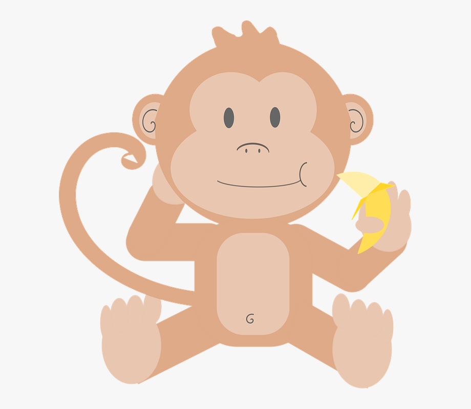 clipart freeuse download Animal cartoon monkey primate. Ape clipart baby