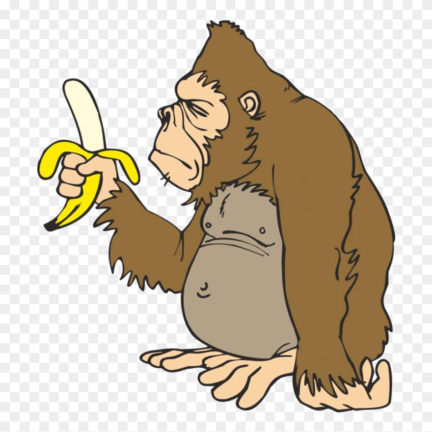 jpg free Svg transparent gorilla with. Ape clipart banana