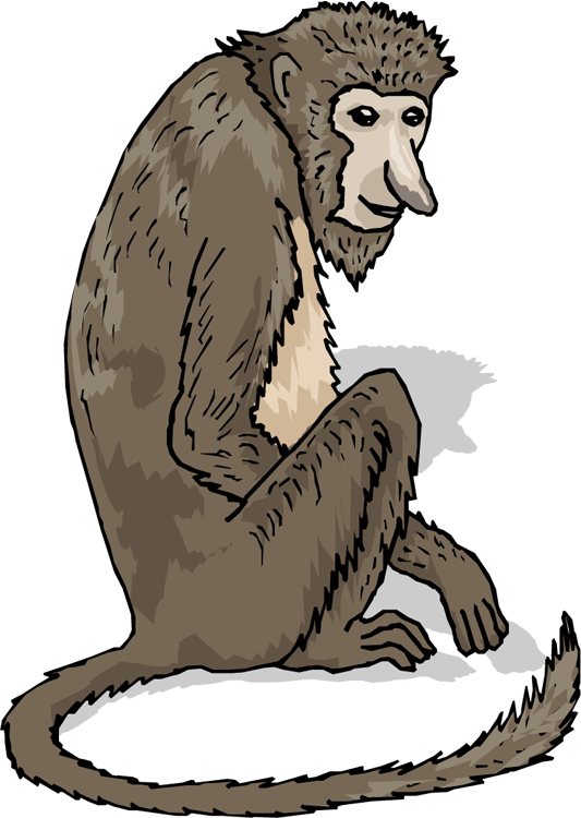 image freeuse library Free nose. Ape clipart big monkey