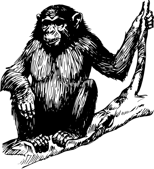 picture freeuse library Ape Clip Art at Clker