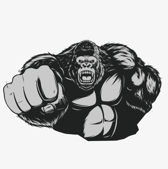 banner library download Ape clipart bodybuilding. Transparent free