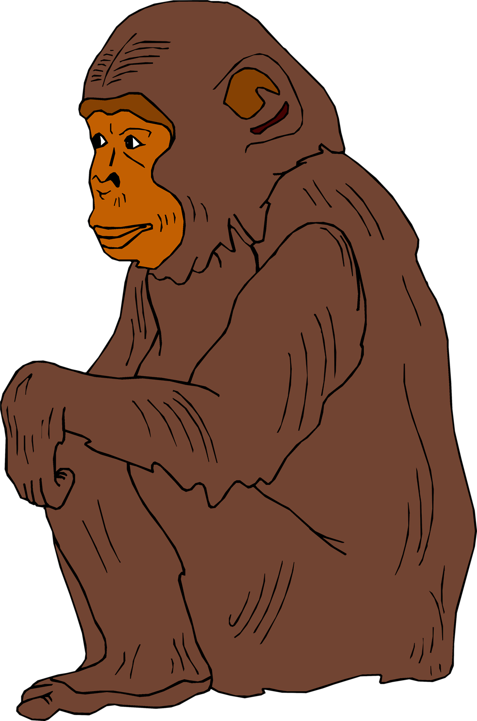 clip download Ape clipart chimpanzee. Free stock photo illustration