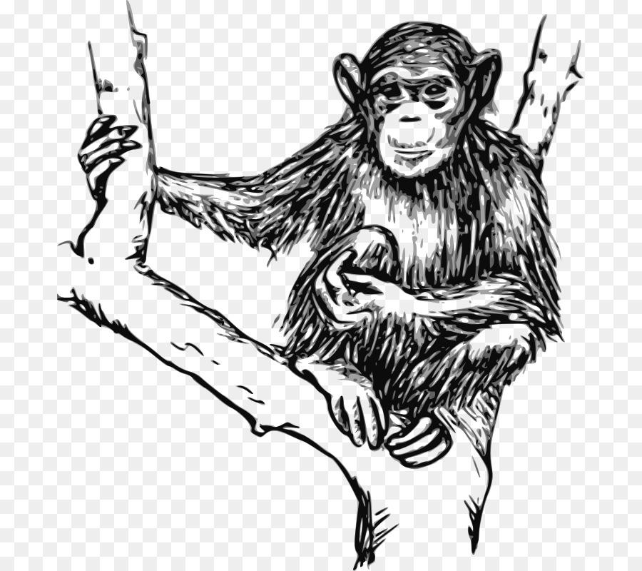 picture freeuse Gorilla drawing clip art. Ape clipart chimpanzee