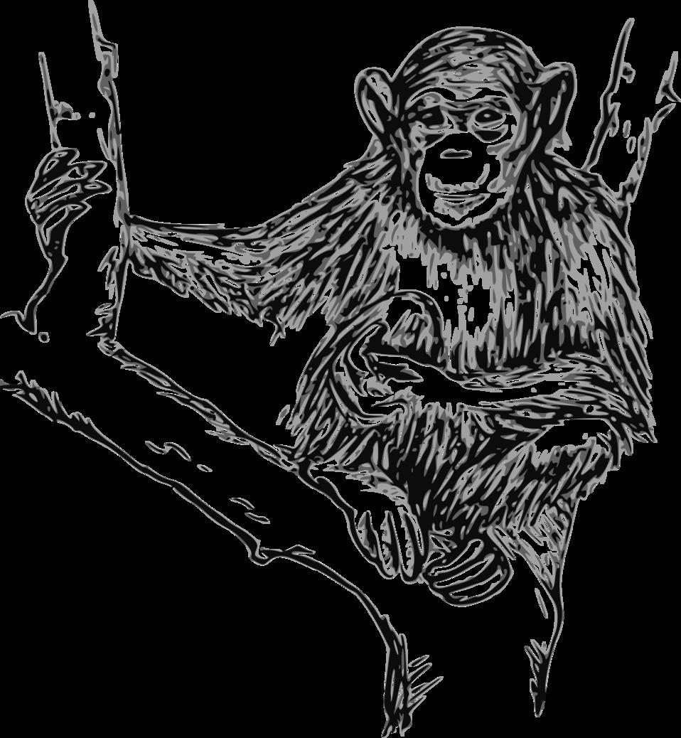 svg transparent Public domain clip art. Ape clipart chimpanzee