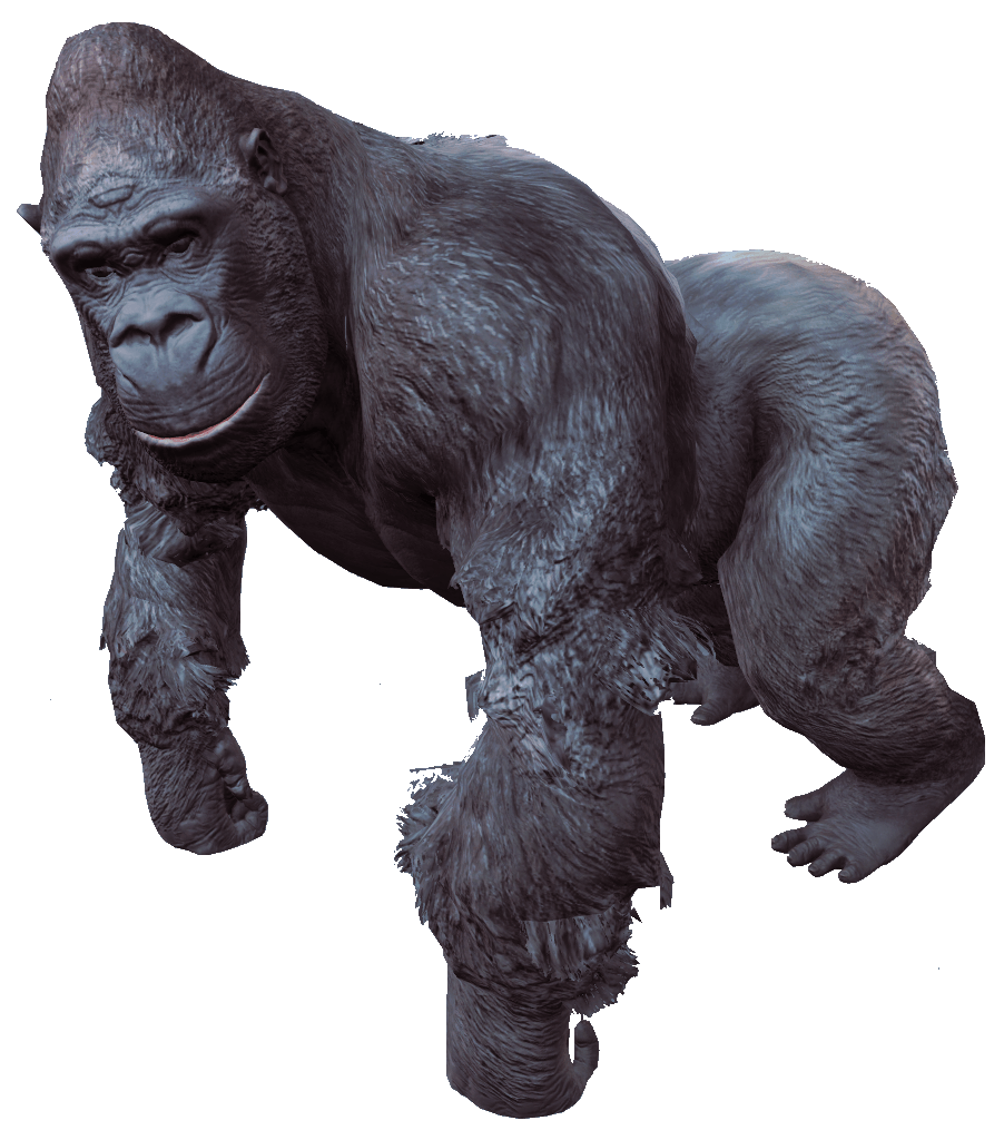 image royalty free download Ape clipart gorilla. Collection of free guerilla