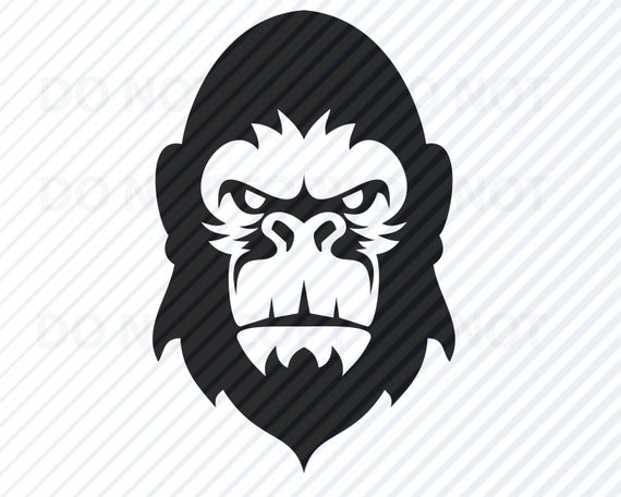 free stock Ape clipart gorilla head. Svg files clip art