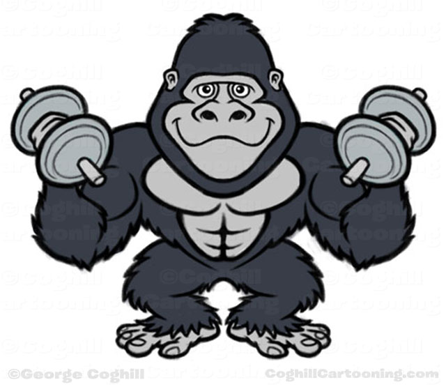 picture library stock Ape clipart jungle gorilla. Gym bodybuilder cartoon character
