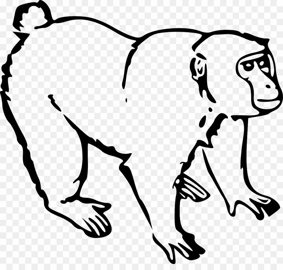 banner library stock Black and white monkey. Ape clipart monky