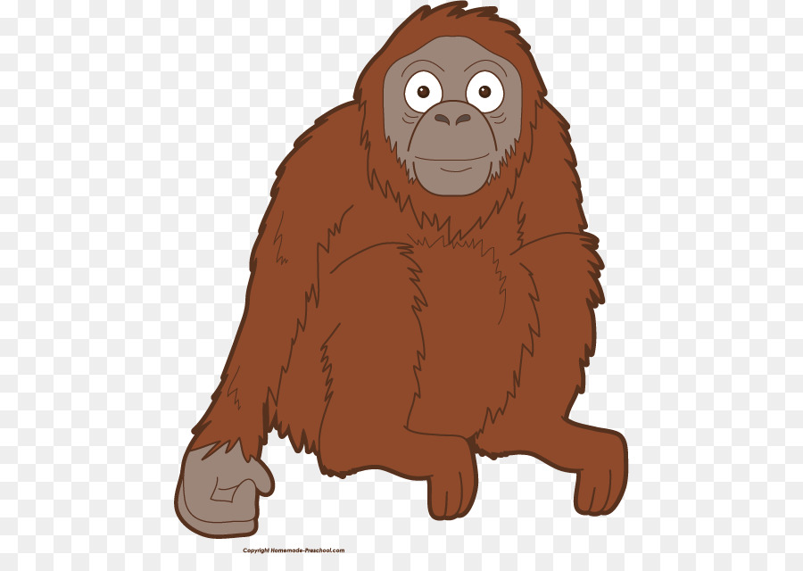 banner freeuse library Transparent free for . Ape clipart orangutan