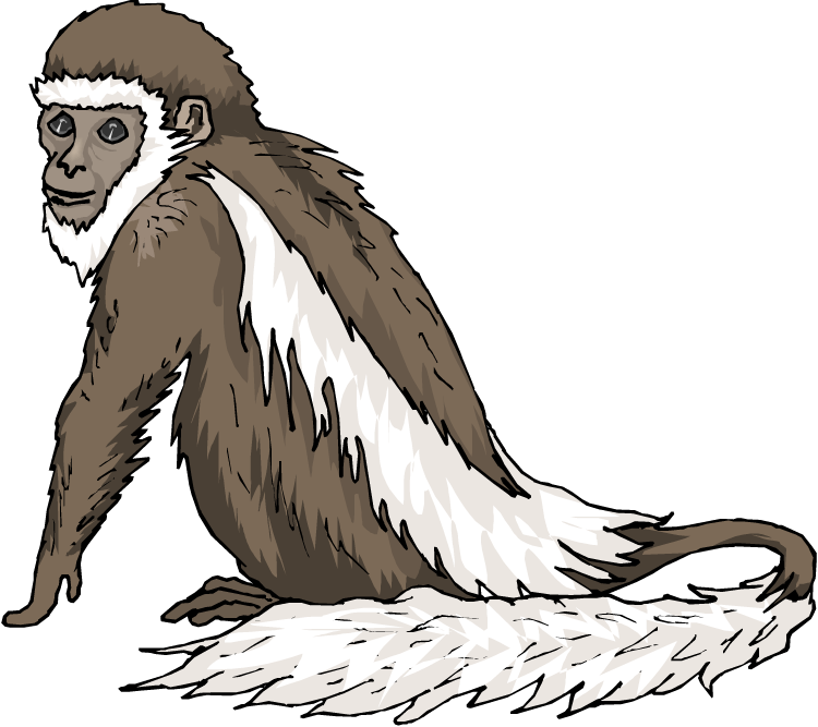 black and white stock Ape clipart realistic. Free monkey.