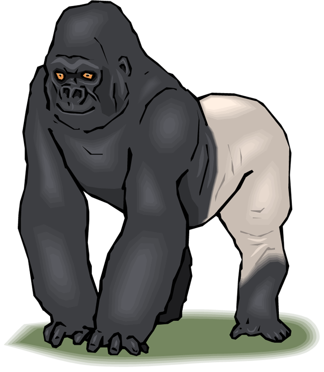 clip black and white stock Ape clipart silverback gorilla. Free download on kathleenhalme.