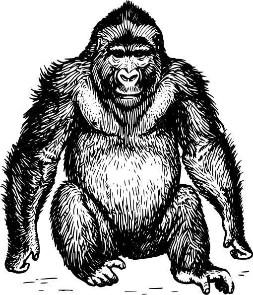 svg free download Ape clipart wild monkey. Hairy clip art at