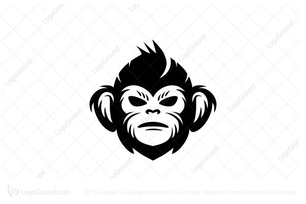 graphic royalty free Transparent free . Ape clipart wild monkey