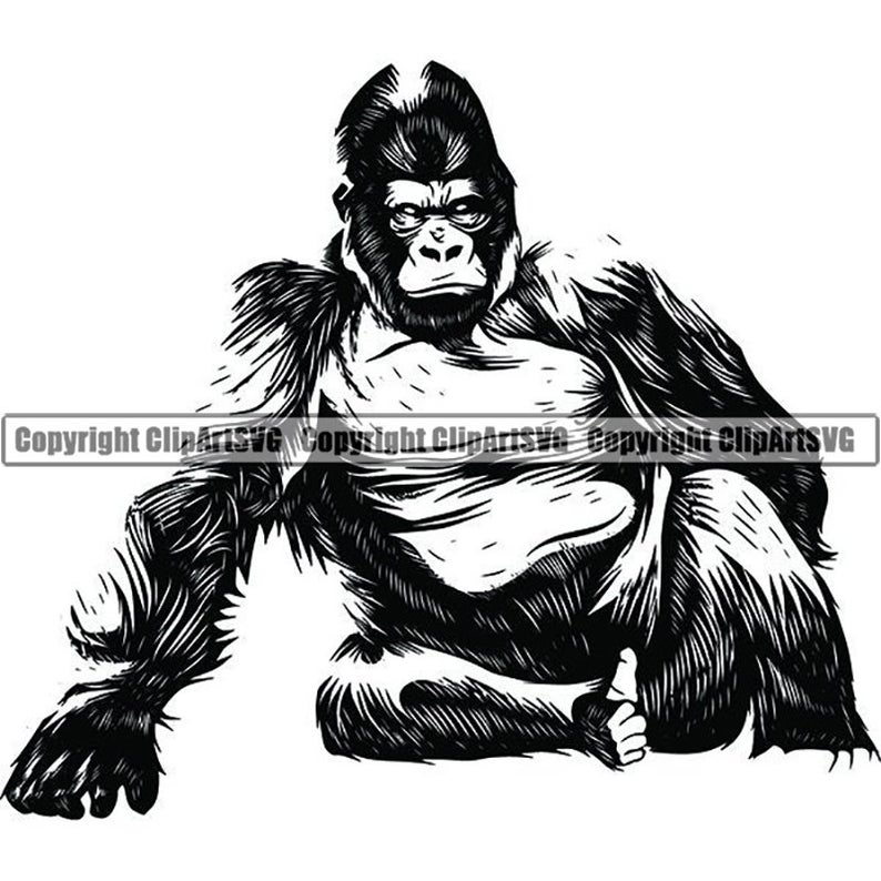 graphic free stock Ape clipart wild monkey. Gorilla animal wildlife jungle