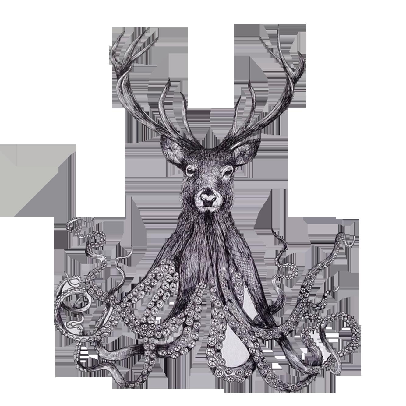clip freeuse library Paper illustrator illustration hand. Drawing octopus pen