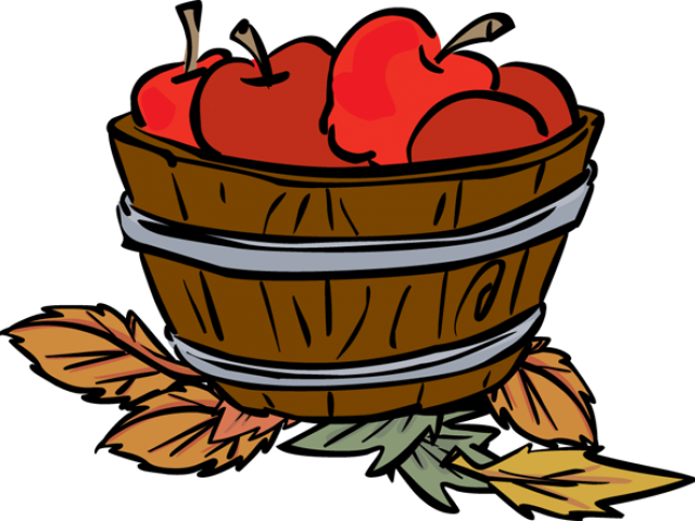 clip freeuse stock Apple bucket picture freeuse