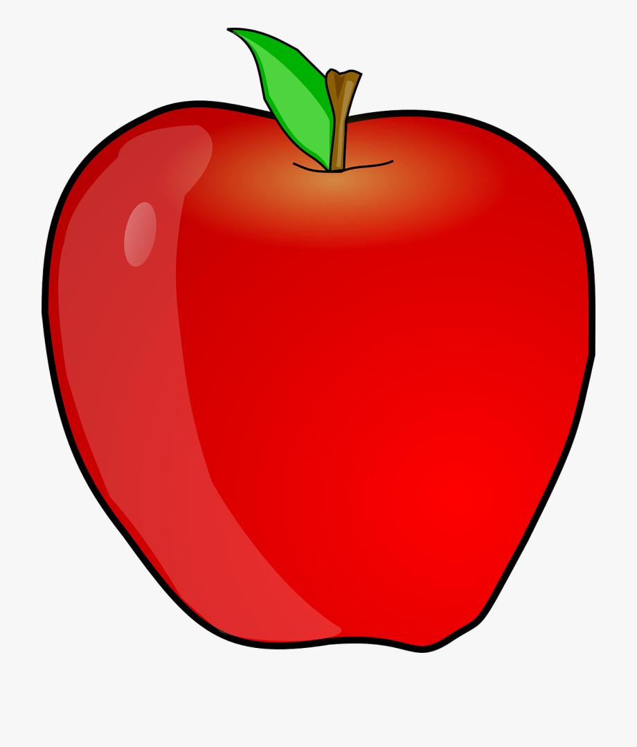 picture transparent stock Apple clipart. Teacher free image transparent