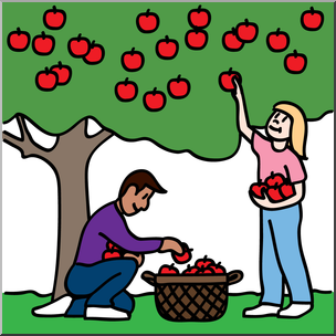 graphic download Apple x making the. Picking apples clipart