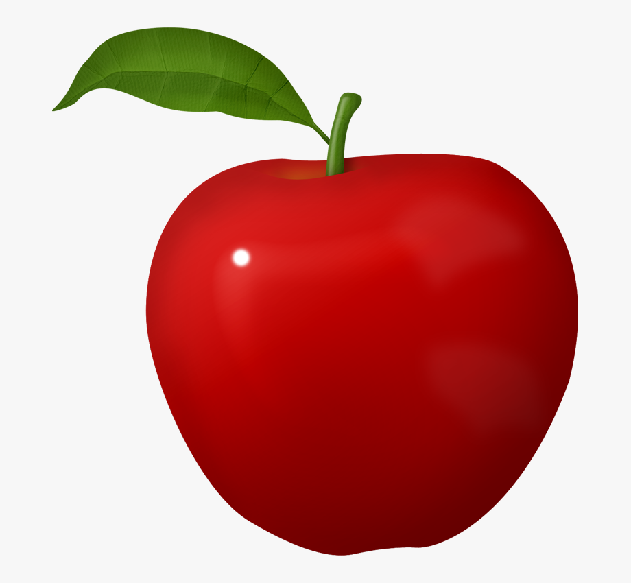 clip art black and white library Garden apple fruit png. Clipart of apples