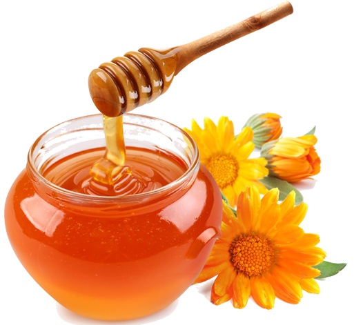 image free Apples and honey clipart. Png transparent images pluspng.