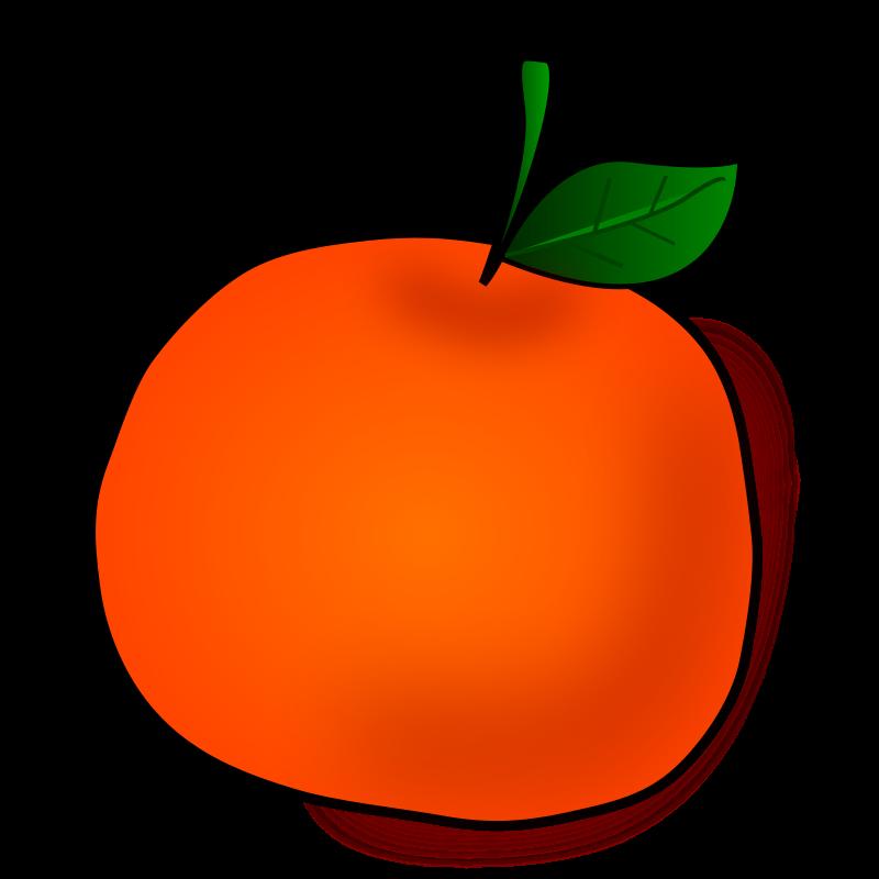 vector library Orange fruit free stock. Salad vector buah