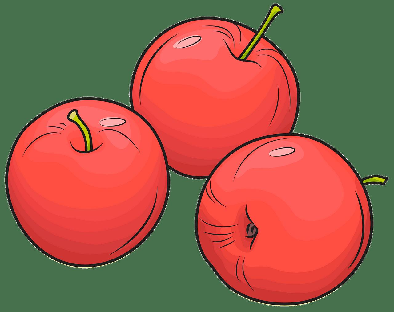 vector free stock Apples clipart. Free download creazilla