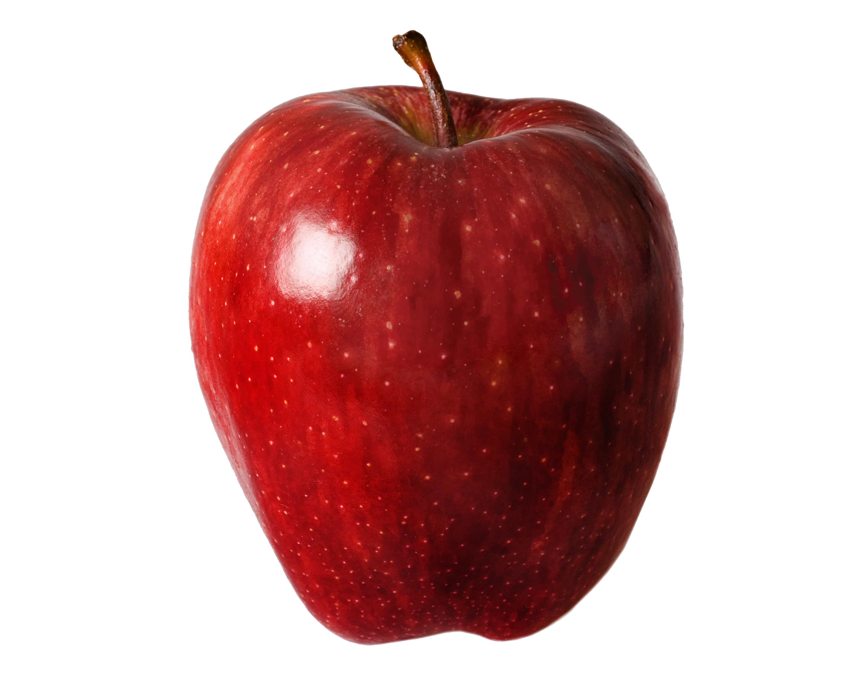 vector transparent download Vector apples healthy. Red apple food fruit
