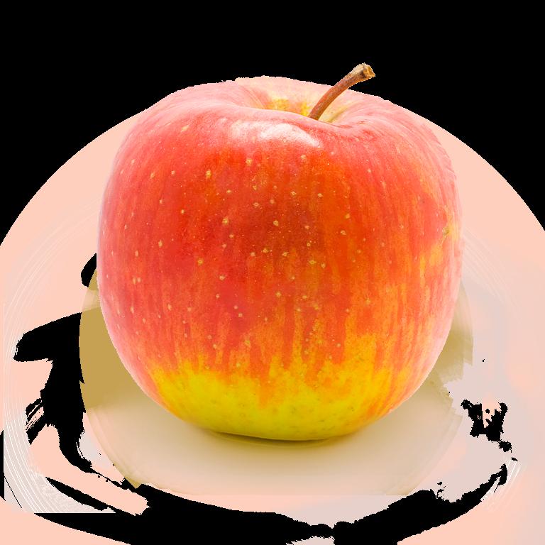 banner royalty free download apples transparent file #89128615