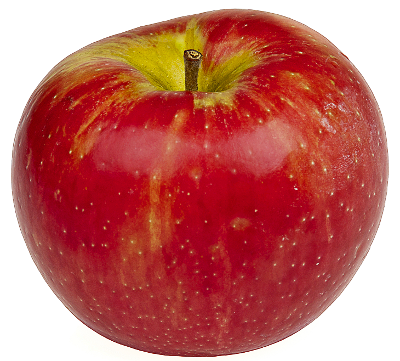 black and white library Apple Fruit PNG Transparent Apple Fruit