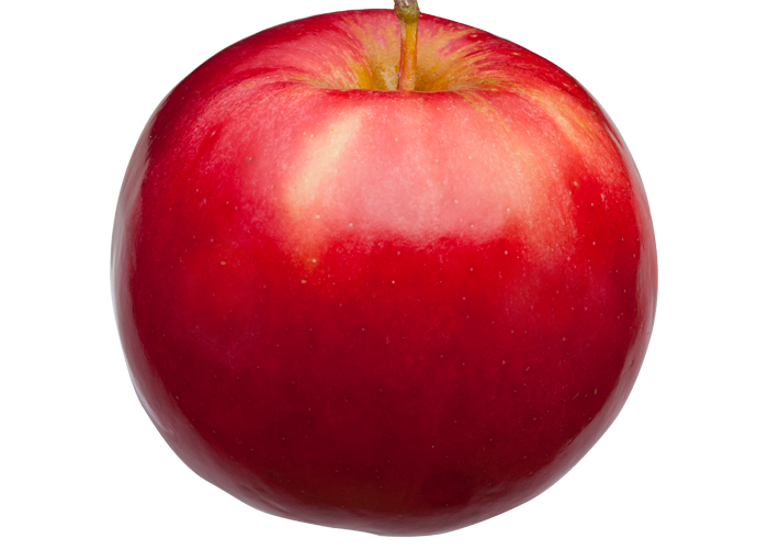 picture transparent stock Ida Red Apples
